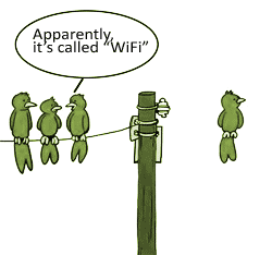 Apparently Its Called Wifi