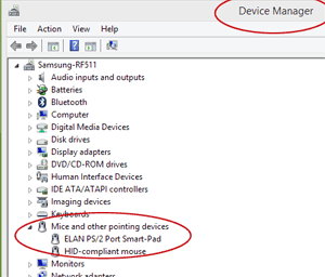 Mice in Device Manager