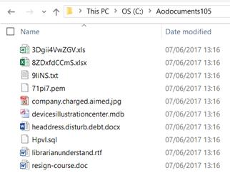 Ransomfree Bait Folder